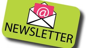 newsletter web marketing data collection
